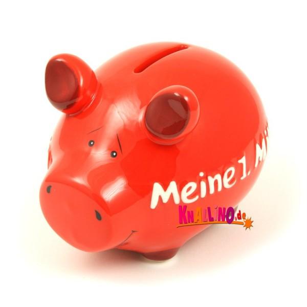 Meine 1. Million Sparschwein