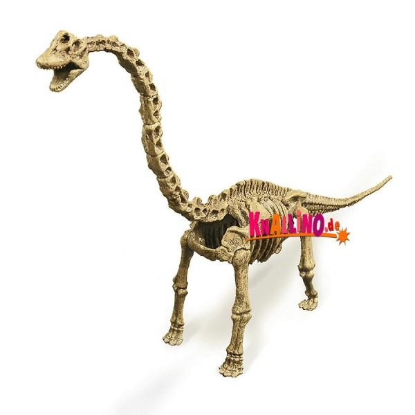 Geoworld Brachiosaurus-Skelett Dino-Ausgrabungsset