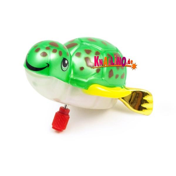 Z Wind Ups Taylor Schildkröte mit Aufziehmotor