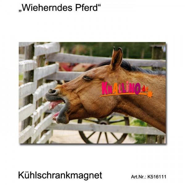 Wieherndes Pferd Kühlschrankmagnet