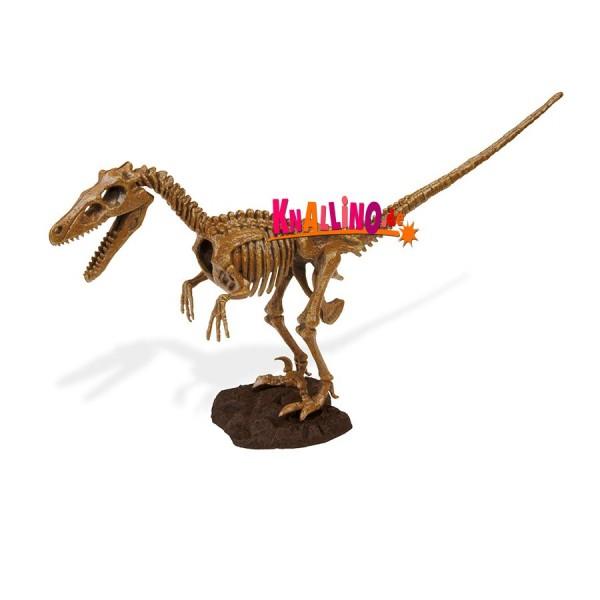 Geoworld Jurassic Eggs Velociraptor Dinoskelett zum Zusammenbauen