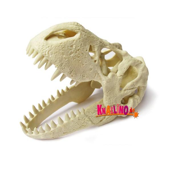Geoworld T-Rex-Schädel Dino-Ausgrabungsset