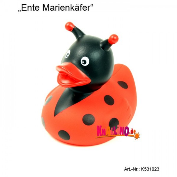Marienkäfer Badeente