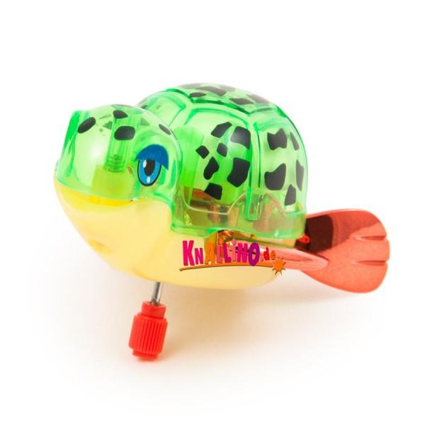Z Wind Ups Topaz Schildkröte mit Aufziehmotor